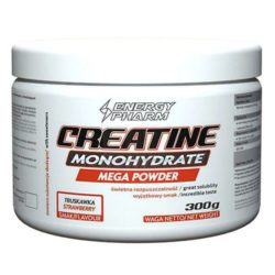ENERGY PHARM Creatine Monohydrate Mega Powder 300